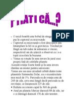 Stiati CA.tic