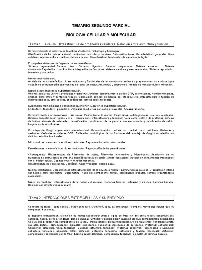 Perfecto Definición Anatomía Celular Embellecimiento - Imágenes de ...