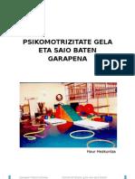 Garapen Psikomotorea - Psikomotrizitate Gela Eta Saio Baten Garapena