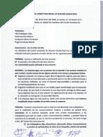 Acta Nº 7 ( Enero) Comité Provincial C. Real Geacam
