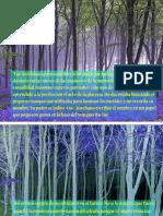 Gabito PDF