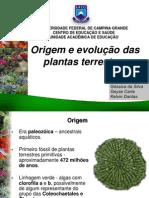 Seminario Origem Plants Terrestres FINAL