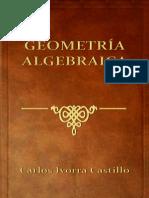 Geometría Algebraica