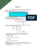 Matriz e determinantes.docx