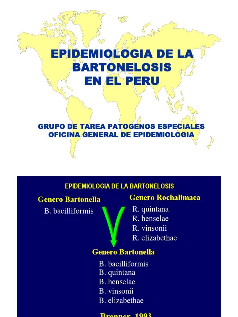 BARTONELOSIS EN EL PERU PDF
