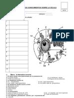 EVALUAC_02_CELULA.pdf