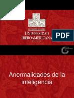 Anormalidades de La Inteligencia