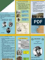 Triptico de Los Viajes de Francisco Pizarro.