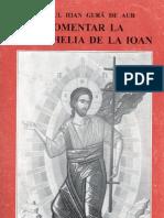 Sfantul Ioan Gura de Aur Comentariile la Evanghelia Ioan
