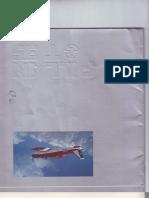 Manual T-35 Pillan