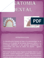 Anatomia Dental Diapo[1]