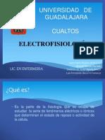 Electro Fisio Log i A