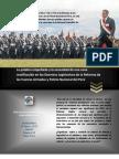 Fortalecimiento y Reforma de Las FFAA y PNP 1