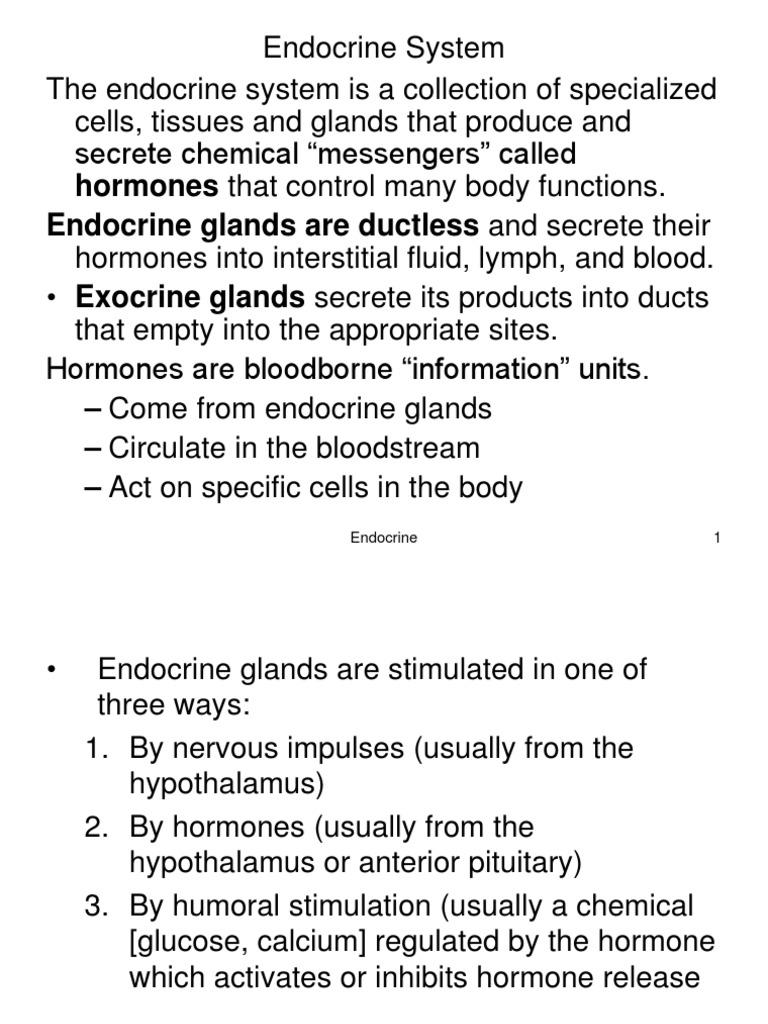Endocrine Handoutsppt Endocrine System Adrenal Gland