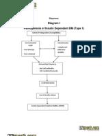 Diabetes Pathophysiology