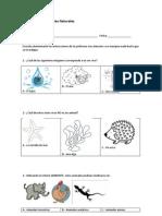 Diagnóstico de Ciencias Naturales PRIMERO BASICO