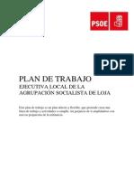 Plan de Trabajo Ejecutiva 2013