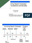 2012_the New Surviving Sepsis Guidelines Kiev_G.bilingan