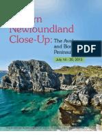 2013 Eastern Newfounland CloseUp