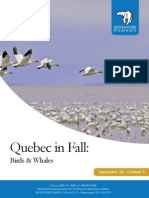 2014 Quebec in Fall
