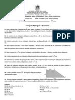 Pitagoras_Exs-1aSerie-2013.pdf