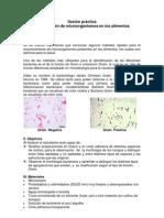 Practica de Laboratorio 1 Microbiologia