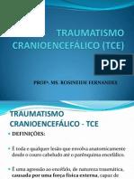 aula_10_tce