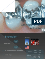 exposicion amalgamas adhesivas