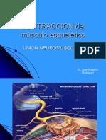 Union Neuromuscular