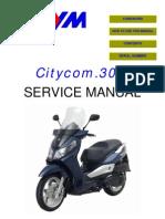 Sym Citycom 300i (en)