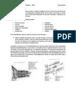 Transmision Manual