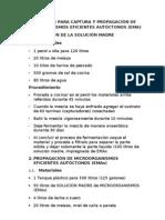 PROTOCOLO PARA CAPTURAS DE MICROORGANISMOS EFICIENTES AUTÓCTONOS