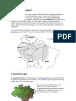 O que é a Amazônia.docx