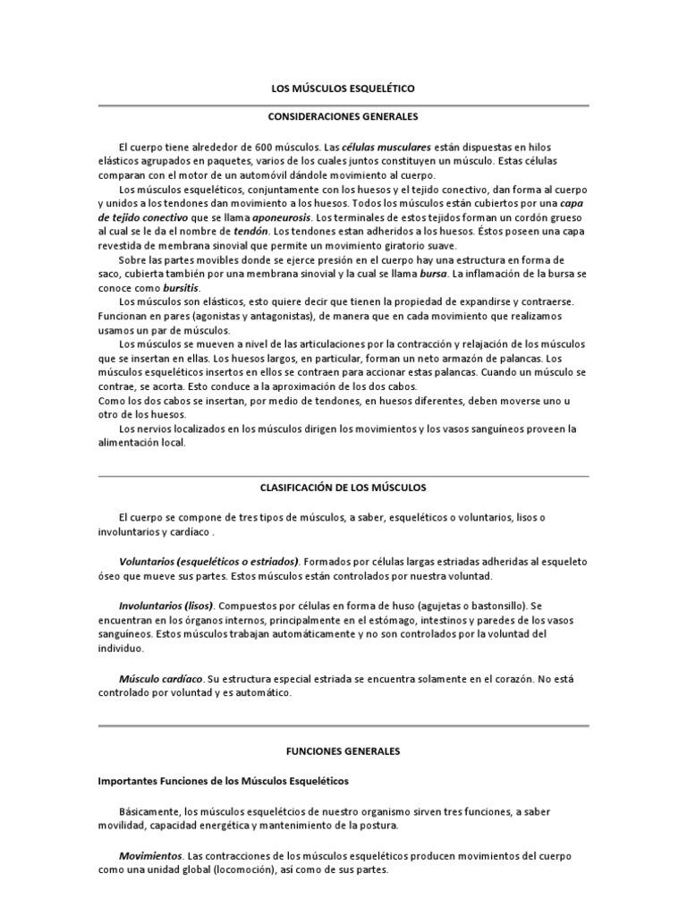 LOS MÚSCULOS ESQUELÉTICO.docx