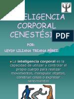 Inteligencia Corporal Cinestesica Presentacion