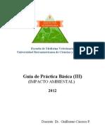 Guia Practica Basica III Impacto Ambiental (1)
