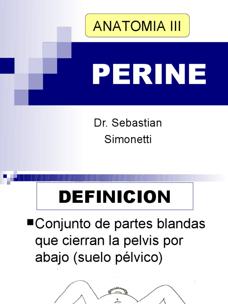Perine