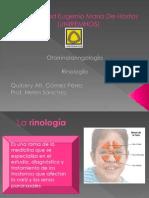 Rinologia Final