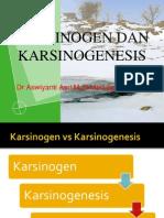 Karsinogen Dan Karsinogenesis