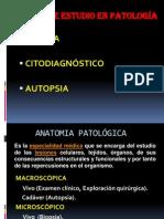 CLASE-1- 2012-II.ppt