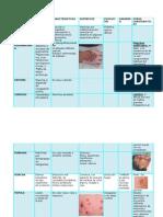 Caracteristicas.derma