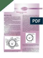 cap03fisiologiafetal