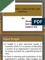 salesbudgetforcastingandcontrol-100427074457-phpapp01