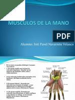 15926283 Musculos de La Mano Futura Medica