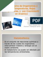 Metabolismo a Altas Bajas Temperatura y Arsenico Equipo 3