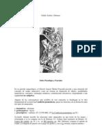 Gödel, Escher y Deleuze - Sobre paradojas y fractales