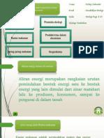 Aliran Energi dan Siklus Biogeokimia