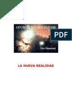 informe mapuche