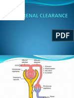 Renal Clearance