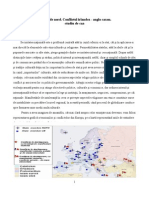 Irlanda-de-Nord-Conflictul-Irlandez-Anglosaxon.pdf